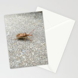 Bugs #1 Stationery Cards