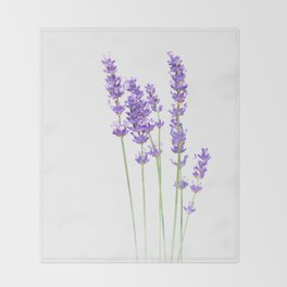 Lavender Throw Blanket