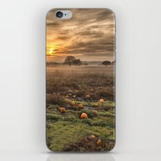Pumpkins At Dusk iPhone Skin