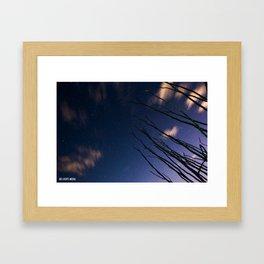 Ocotillo sight  Framed Art Print