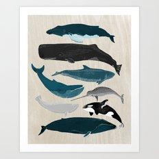 Whales - Pod of Whales Print by Andrea Lauren Art Print