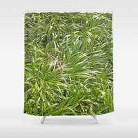 bows Shower Curtains featuring Bows 2 by Motif Mondial