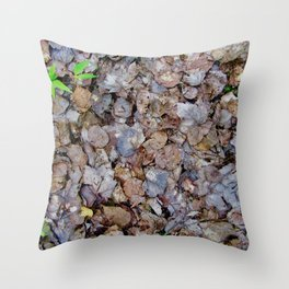 Last Years Fallen Foliage Throw Pillow