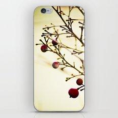 life in the winter iPhone & iPod Skin
