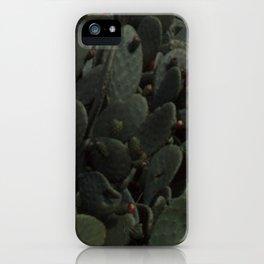 Nopal iPhone Case