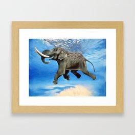 Rajan The Swimming Elephant Framed Art Print