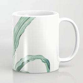 Epidendrum sinense  from Les liliacees (1805) by Pierre-Joseph Redoute Coffee Mug