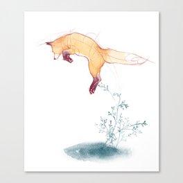Zorrito. Canvas Print