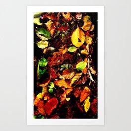 Lots of Leaves Art Print
