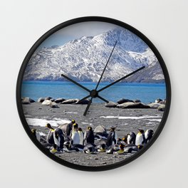 King Penguins and Fur Seals Wall Clock