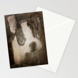 It's A Kind of Boston Magic Stationery Cards
