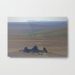 Arctic Tundra in Summertime Metal Print