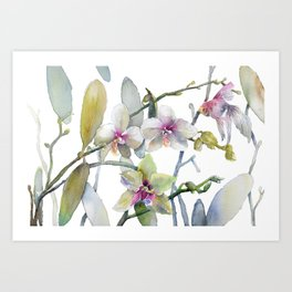 White and Pink Magnolias, Goldfish hiding, Surreal Art Print