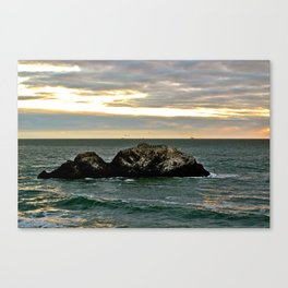 Seagull Rock Canvas Print