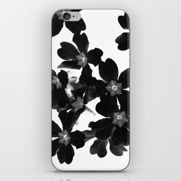 Primrose In BW iPhone Skin