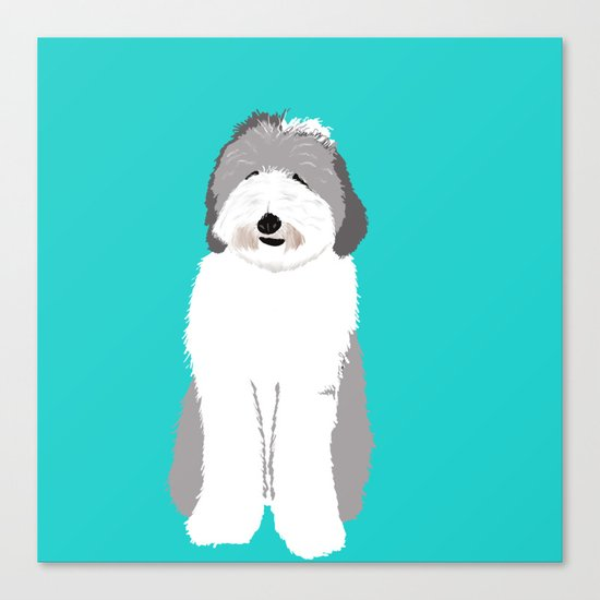 Lucy The Sheepadoodle Canvas Print