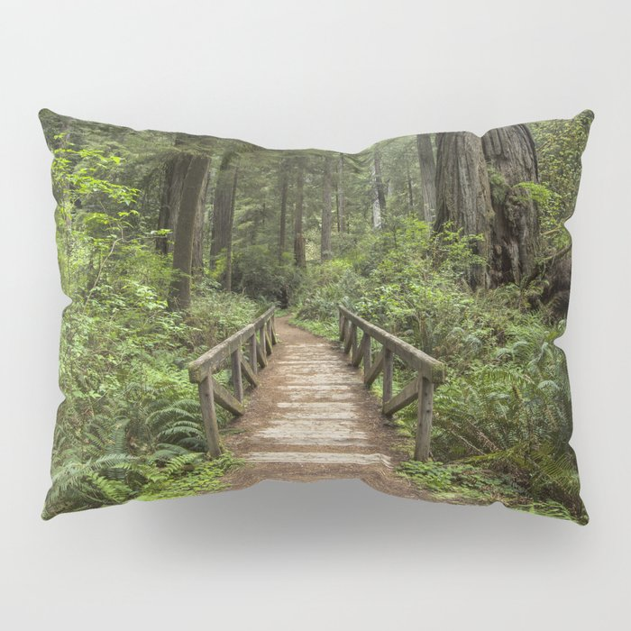 Walk Through Prairie Creek Redwoods State Park Pillow Sham