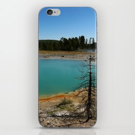 Amazing Hot Spring Colors iPhone Skin
