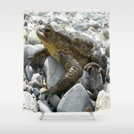 Bufo Bufo Toad Lounging On Stones Shower Curtain