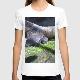 Watercolor Turtle, Loggerhead Musk Turtle 01, Rock Run, Florida T-shirt