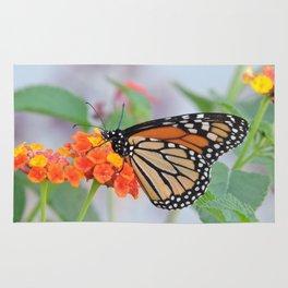 The Monarch Has An Angle Rug