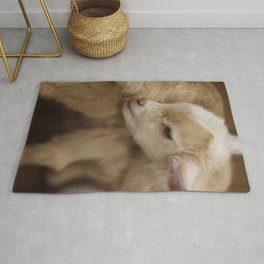Acting The Goat Rug