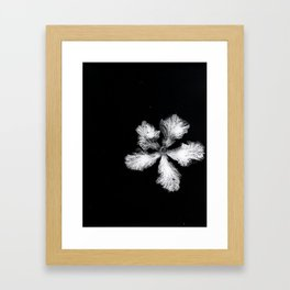 Rollercoaster Squiggling Framed Art Print