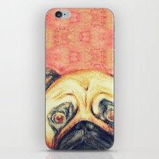 Grunt The Pug iPhone & iPod Skin