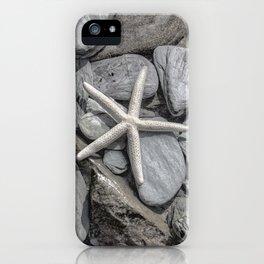 Starfish on Rocks monochrome beige iPhone Case