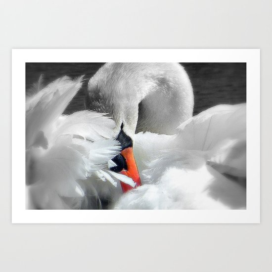 Soft As A Feather Art Print