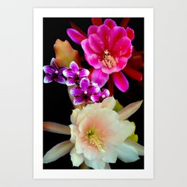 Pinkish, Pinker, And Far Out Pink Art Print