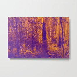 OVER THE RIVER AND INTO THE ABYSS Metal Print
