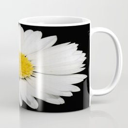 Nine Common Daisies Isolated on A Black Backgound Coffee Mug
