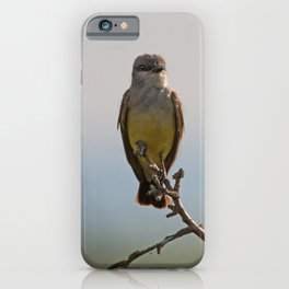 Perched Western Kingbird iPhone Case