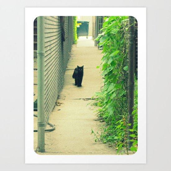 Black Cat With Gangway Ivy  Art Print