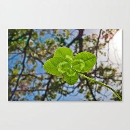 Four-Leaf Clover & Sun-flare Canvas Print