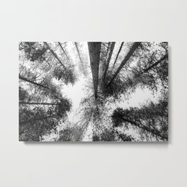 WRIGHTWOOD, CALIFORNIA Metal Print
