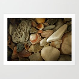 Sea Pebbles With Shells Art Print