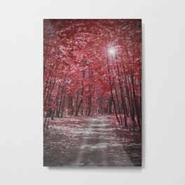 Moonlit Road Through Red Forest Metal Print