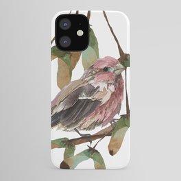 Maple Sweet Housefinch iPhone Case