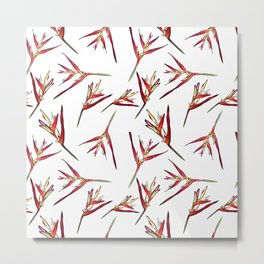 Baby Heliconia Floral Pattern Metal Print