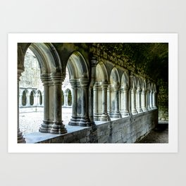Askeaton Castle Cloisters Art Print
