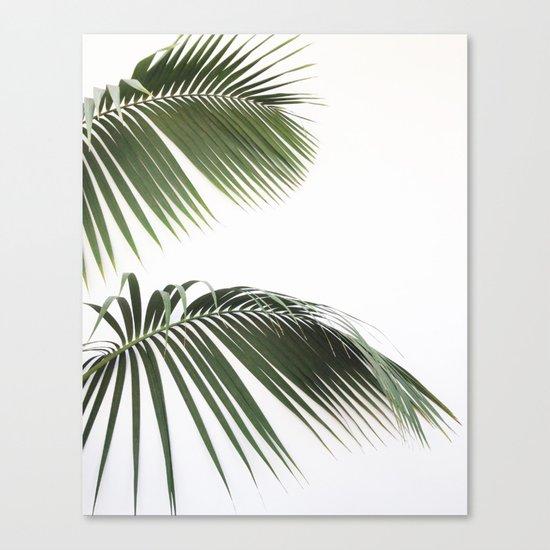 Fronds Canvas Print