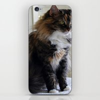 nemo iPhone & iPod Skins featuring Nemo Kitty by Upstanding Delinquent