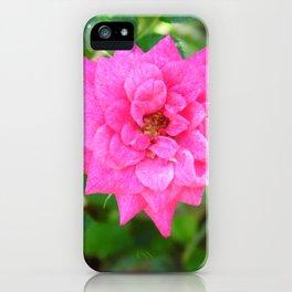 Rosa de invierno iPhone Case