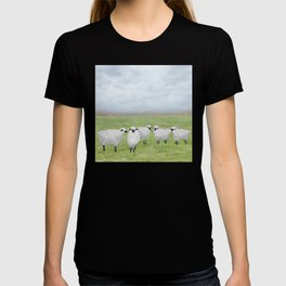 sheep and queen anne's lace T-shirt