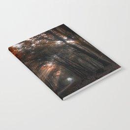 Ein Lichtschein Notebook