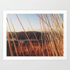 fine looking weeds  Art Print