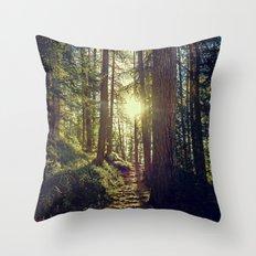 Hidden trail Throw Pillow