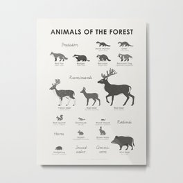 Infographic Guide to Forest Animals Metal Print